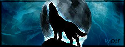 Signature dedicated to Wolf