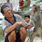 monkeysmack's Photo
