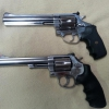 Smith & Wesson and Rossi