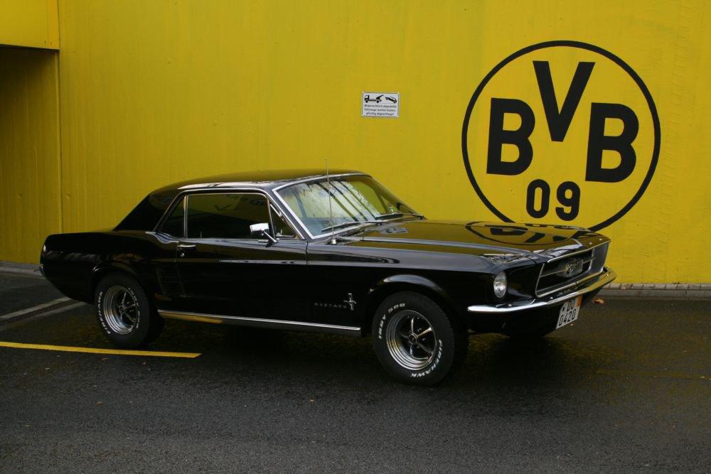 Mustang004