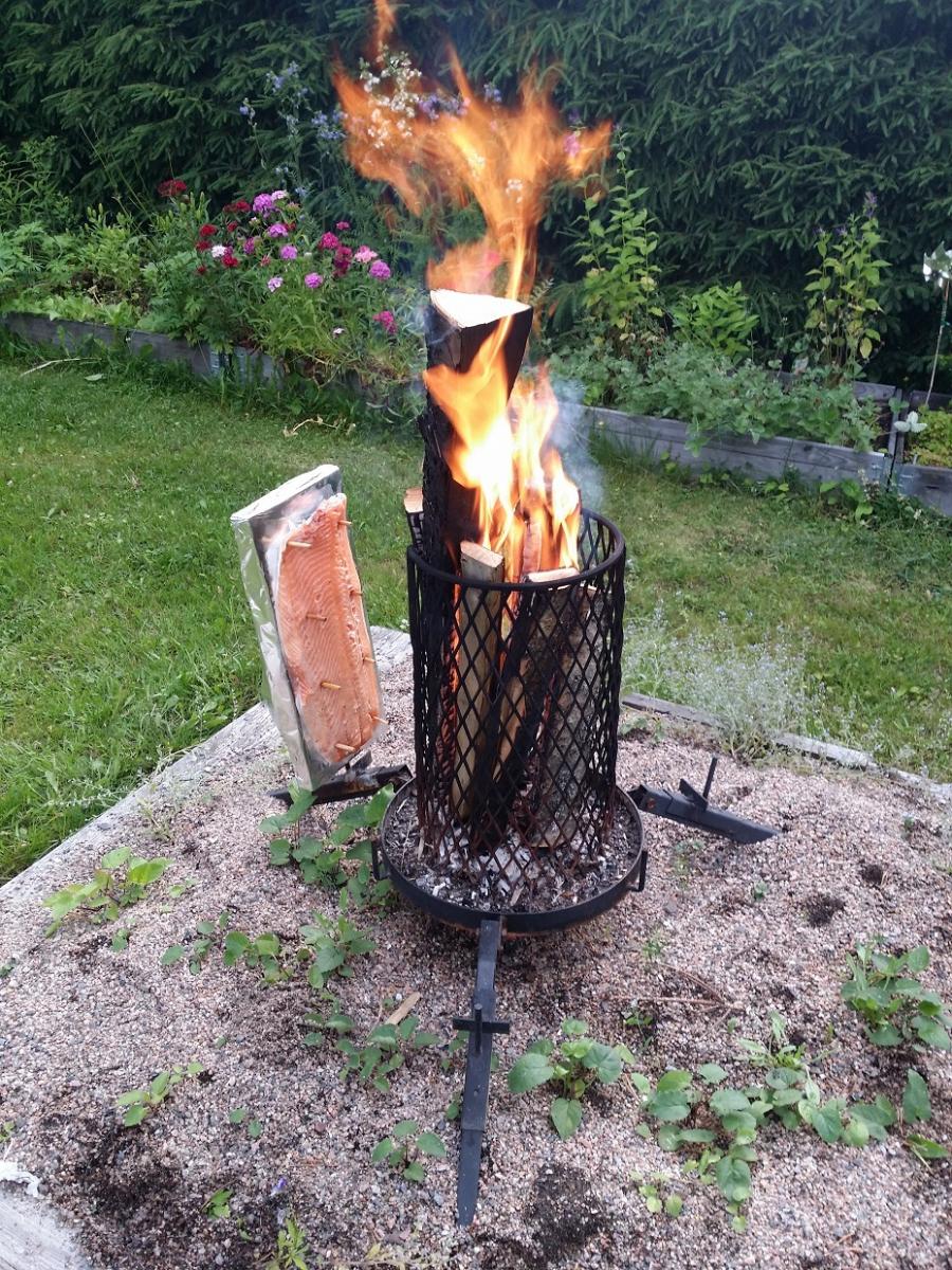 Salmon making on backyard