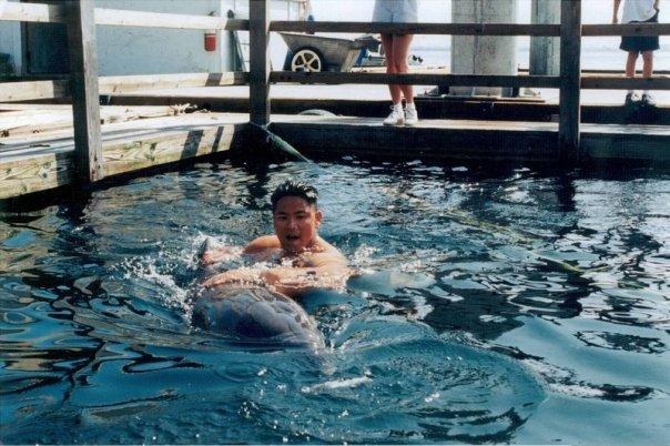 Explosive Ordinance Disposal Dolphin