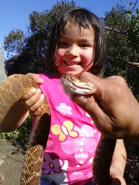Abigale Rattlesnake
