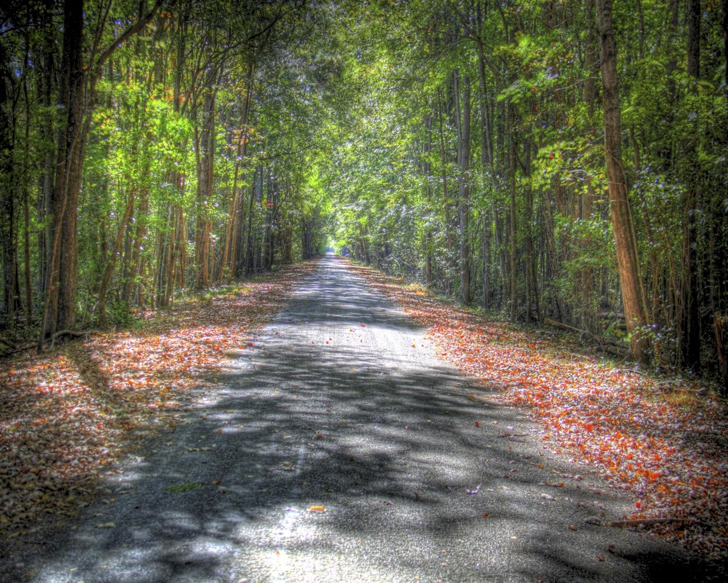 cobb road1 tonemapped