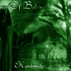 Children Of Bodom wallpaper (9)