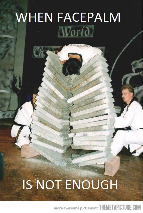 funny facepalm extreme karate bricks