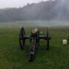 Fog napoleon