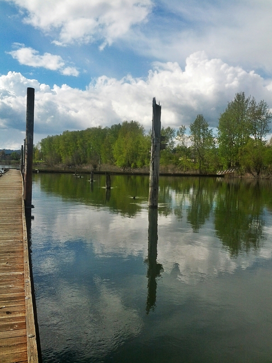 The edge of the Columbia river along Lewis and Burke trail