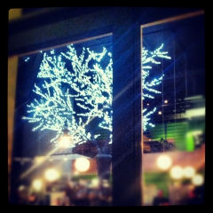 Night walk, LED Sakura Tree