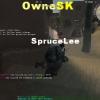 ownesk7