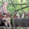 FA LazyHippo02 (Forum)