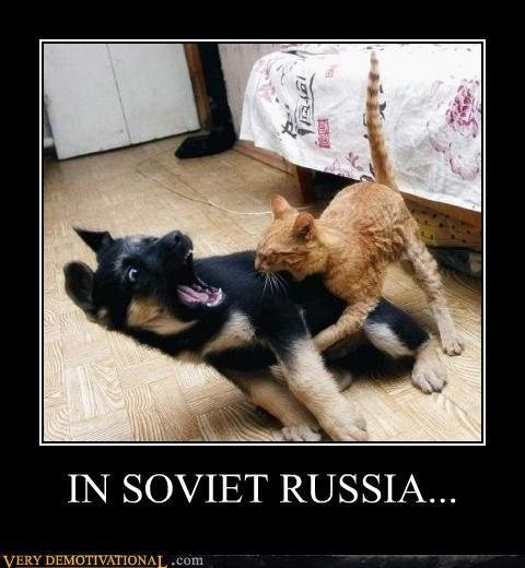 In Soviet  Russia jokes