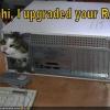 Cat RAM1