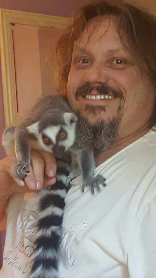 Lemur Daddy