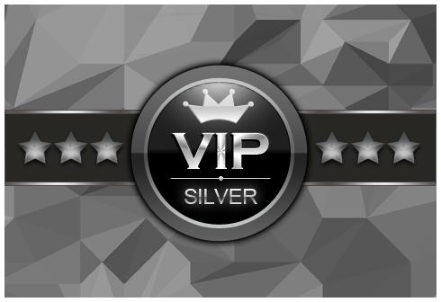 FA_VIP-Silver.png