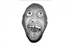 Crazy_Face.jpg