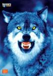 WolfHunter's Photo