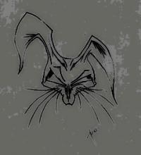 rabbit's Photo
