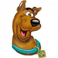 Scooby755's Photo