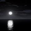 ^^Night's Photo